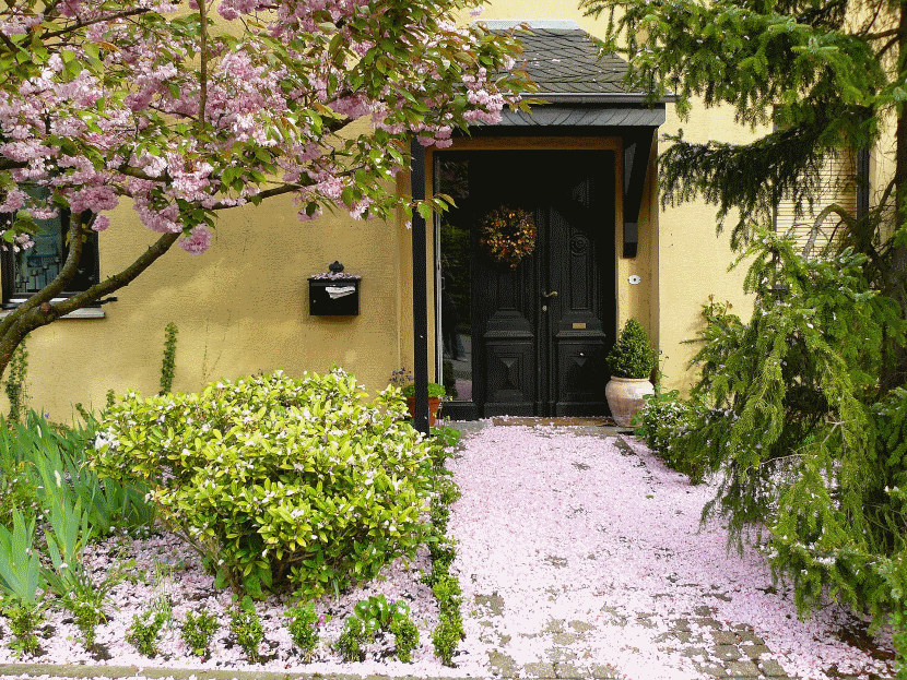 house entrance with flowering beds 830